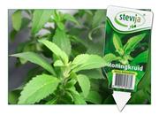 Stevia Zaad, 25% korting!